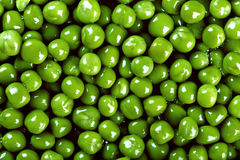 Close-Up Background Of Wet Green Peas Stock Photos