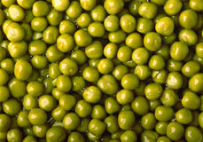 Close-Up Background Of Wet Green Peas Stock Photography