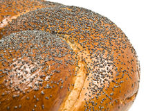 Close-up of bagel with poppy seeds Royalty Free Stock Photo