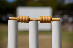 Close-up of bails on stumps. At cricket field stock images