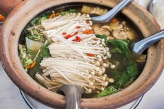 Close-up Bak kut teh or Hokkien ingredient herb vegetable and me. At in clay pot royalty free stock photos