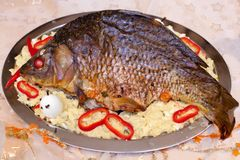 Close up of baked carp Royalty Free Stock Photos