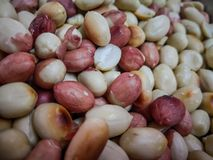 a close up of baked peanuts with the reddish cover on it stock images