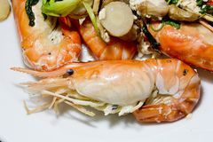 Close up baked Salted Prawns Stock Photography