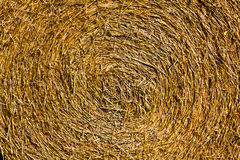 Close-up of a Bale of straw Royalty Free Stock Image