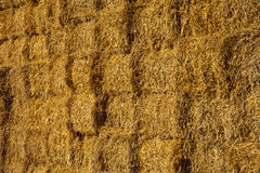 Close-up of bale of straw Royalty Free Stock Images