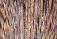 Close up bamboo fence background Stock Images