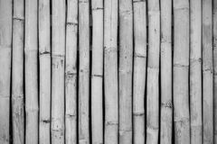 Close-up of bamboo fence, black and white Stock Photos