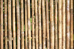 Close up of bamboo Fence Royalty Free Stock Photos