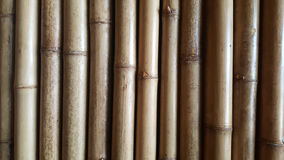 Close-up Bamboo texture and side shadows with natural patterns backgrounds Royalty Free Stock Images