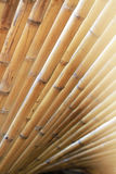 Close-up Bamboo texture and side shadows with natural patterns backgrounds Stock Images