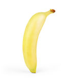 Close up of a banana.  on white. Royalty Free Stock Photo