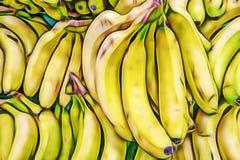 Bananas in bulk in greengrocer. Close up bananas in bulk in greengrocer stock photography