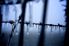 Ice covered barb wire Royalty Free Stock Photo