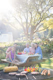Close-up of barbecue and family sitting on the table. In the park Royalty Free Stock Image