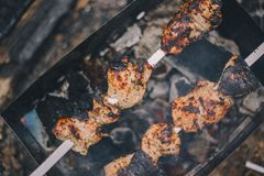 Close-up barbecue pork shashlik on the grill in nature stock image