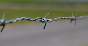 Close-up of barbed wire Stock Photo