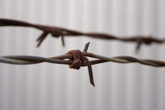 Close up of barbed wire Stock Photography