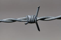 Close-up of barbed wire Stock Photos