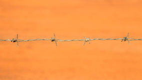 Close-up Barbed Wire Royalty Free Stock Photo