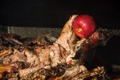 Roasted Pig. Close up of barbequed pig on smoker grill with red apple in it`s mouth Royalty Free Stock Images