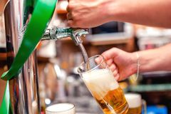Close-up of barman brewing a draft beer at pub. Bartender pourin Royalty Free Stock Photography