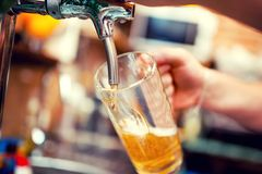 Close-up of barman hand at beer tap pouring a draught beer Royalty Free Stock Images