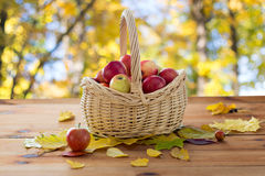 Close up of basket with apples on wooden table Stock Images