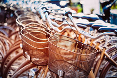 Close Up Of Basket Of Bicycle On Parking. Sunlight Sunshine Thro Royalty Free Stock Photos