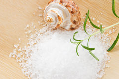 Close up of Bath Salts and Rosemary Royalty Free Stock Photos