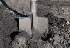 Close-up of bayonet spade into the soft earth. They`re digging u. P an empty field of black soil Stock Photography