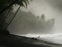 Close-up of the beach. In Punta Banco at dawn, Costa Rica, Central America Stock Photos