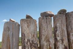 Close-up of beach groynes Royalty Free Stock Image