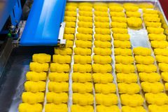 Close up bean dough loaf after press forming for asia or thai sweets on tray from belt conveyor of automatic food making machine. In production line for high stock photo
