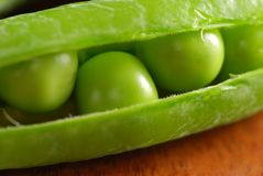 Close-up of beans in its pod Stock Image