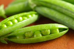 Close-up of beans in its pod Royalty Free Stock Images
