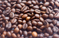 Close up beans on a white background. Coffee  the entire screen for the . Roasted   brown. Lots of  in high definition. Royalty Free Stock Photos