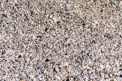 Background of sand and pieces of shells on beach royalty free stock photos