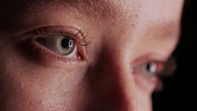Close-up Beautiful Blue Eye stock photos