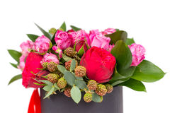Close up of beautiful bouquet of pink and red roses isolated on Stock Photo
