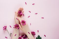 Close-up beautiful female hands with purpure flowers on pink background. Cosmetics for hands anti wrinkle. stock photography