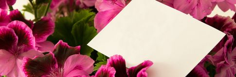 Close Up of beautiful fresh flowers with greeting card for Mother`s day, gratefulness present stock image