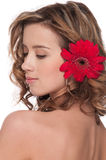 Close-up of beautiful girl with red aster flower Royalty Free Stock Image