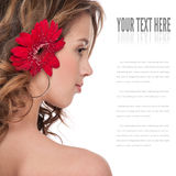 Close-up of beautiful girl with red aster flower Royalty Free Stock Photo