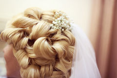 Close up of beautiful hairstyle stock photography