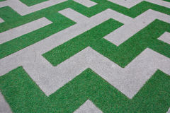 Close up of Beautiful line green grass Stock Photography