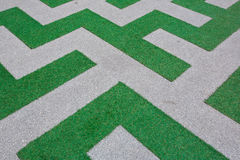 Close up of Beautiful line green grass Royalty Free Stock Images