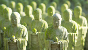 Close up of beautiful many monk stone statue with moss and sun Stock Photography