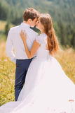 Close-up of beautiful pair holding each other outdoors at sunny day with forest as background stock images
