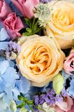 Close up of beautiful soft colour flower bouquet with blue Hydra Stock Photography